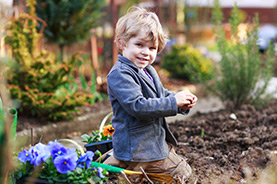 The Junior Gardener Club